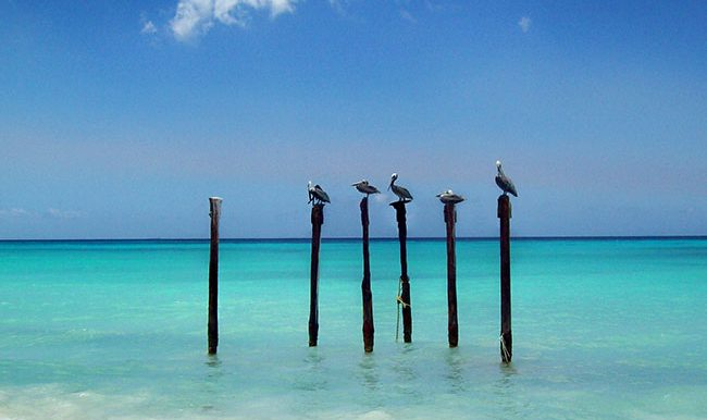 This picture was taken at Eagle Beach in Aruba on one of our man